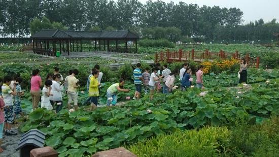 6月25日,淮安曙光双语学校小学部组织部分六年级优秀学生赴泗洪洪泽湖湿地公园,感受湿地自然保护区的魅力。   在规腰桥向下7 000亩处的芦苇迷宫里,孩子们乘船欣赏了芦苇丛中的迷宫之美,宽阔的湖面,高高的芦苇,让身处其中的孩子分不清东南西北。   在荷花物种科技示范园,王莲池、睡莲池、观赏鱼池、鸟类救护中心、垂钓中心、鸟与荷花共生区和十里荷花风光带,美不胜收,让孩子们流连其中,纷纷拍照留念。   在洪泽湖湿地博物馆,孩子们参观了门厅、序厅、湿地生态厅、珍禽标本厅和湿地演变厅。博物馆里收藏着湿地自然类标